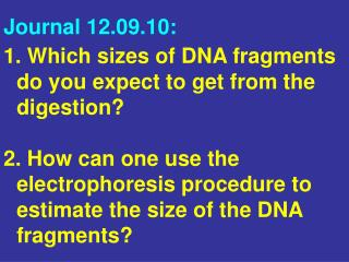 Which sizes of DNA fragments  do you expect to get from the digestion?