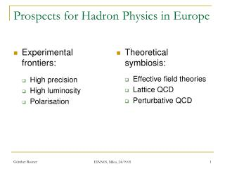 Prospects for Hadron Physics in Europe