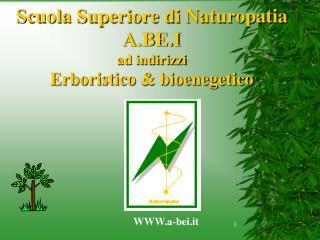 Scuola Superiore di Naturopatia A.BE.I ad indirizzi Erboristico & bioenegetico