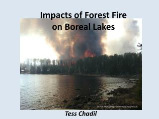 Impacts of Forest Fire  on Boreal Lakes