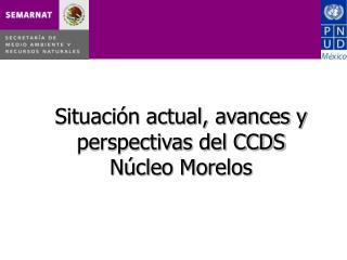Situación actual, avances y perspectivas del CCDS Núcleo Morelos