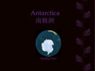 Antarctica     ???