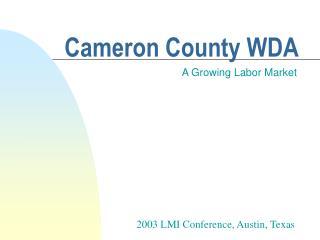 Cameron County WDA