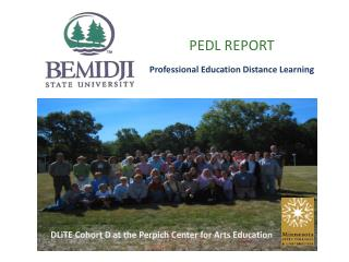 PEDL REPORT Professional Education Distance Learning