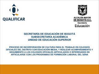 SECRETARÍA DE EDUCACIÓN DE BOGOTÁ SUBSECRETARÍA ACADÉMICA  UNIDAD DE EDUCACIÓN SUPERIOR
