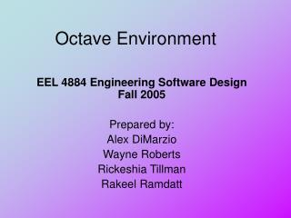 Octave Environment