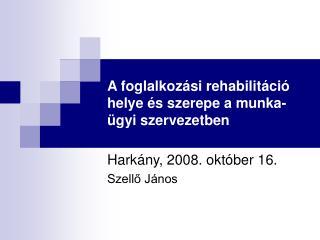 A foglalkozási rehabilitáció helye és szerepe a munka-ügyi szervezetben