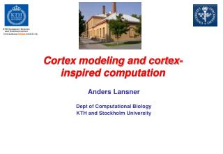 Cortex modeling and cortex-inspired computation