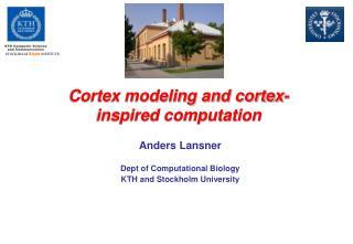 Cortex modeling and cortex-inspired computation