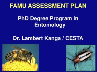 FAMU ASSESSMENT PLAN PhD Degree Program in Entomology Dr. Lambert Kanga / CESTA