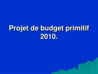 Projet de budget primitif 2010.