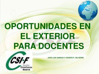 OPORTUNIDADES EN  EL EXTERIOR  PARA DOCENTES          JOSÉ LUIS GANUZA Y VICENTE F. VALVERDE