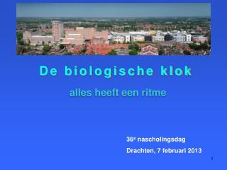 De biologische klok