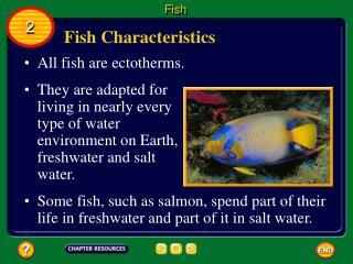 Fish Characteristics