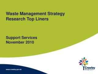 Waste Management Strategy Research Top Liners Support Services November 2010