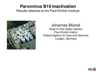 Parvovirus B19 Inactivation Results obtained at the Paul-Ehrlich-Institute