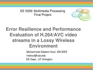 Error Resilience and Performance Evaluation of H.264