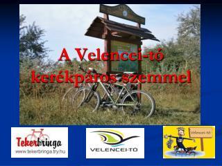 A Velencei-tó kerékpáros szemmel