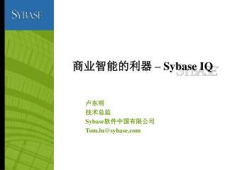 商业智能的利器  – Sybase IQ