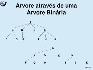 Árvore através de uma Árvore Binária