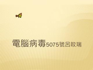 電腦病毒 5075 號呂旼瑞