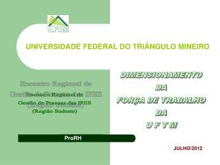 DIMENSIONAMENTO DA FORÇA DE TRABALHO DA U F T M