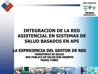 LA EXPERIENCIA DEL GESTOR DE RED MINISTERIO DE SALUD  RED PUBLICA DE SALUD SUR ORIENTE PEDRO YAÑEZ