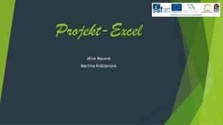 Projekt-Excel