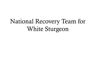 National Recovery Team for White Sturgeon