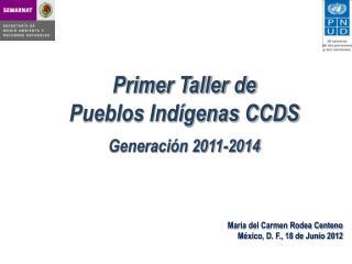 Primer Taller de  Pueblos Indígenas CCDS Generación 2011-2014