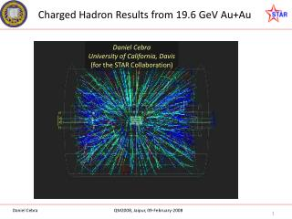 Charged Hadron Results from 19.6 GeV Au+Au