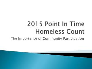 2015 Point In Time Homeless Count