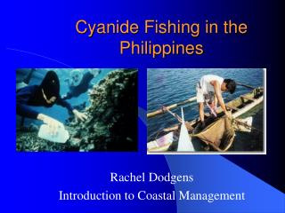 Cyanide Fishing in the Philippines