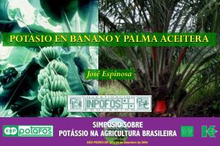 POTASIO EN BANANO Y PALMA ACEITERA