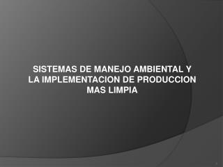 SISTEMAS DE MANEJO AMBIENTAL Y LA IMPLEMENTACION DE PRODUCCION MAS LIMPIA