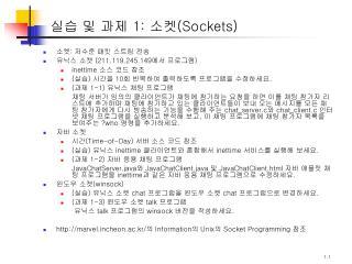 실습 및 과제  1:  소켓( Sockets)
