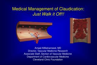 Amjad AlMahameed, MD Director, Vascular Medicine Research