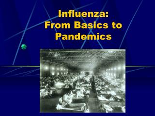 Influenza:  From Basics to Pandemics