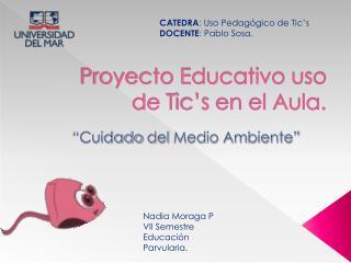 Proyecto Educativo uso de  T ic's  en el Aula.