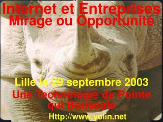 Internet et Entreprises Mirage ou Opportunité