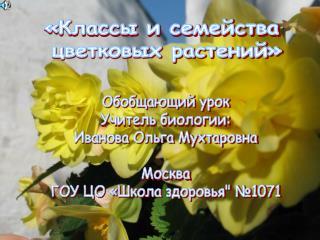 «Классы и семейства  цветковых растений»