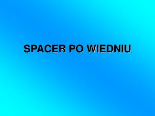 SPACER PO WIEDNIU
