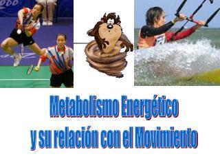 Metabolismo Energ tico y su relaci n con el Movimiento