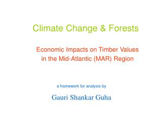Climate Change & Forests