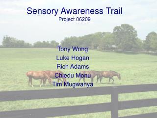 Sensory Awareness Trail Project 06209