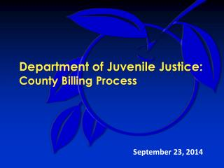 Department of Juvenile Justice: County Billing Process