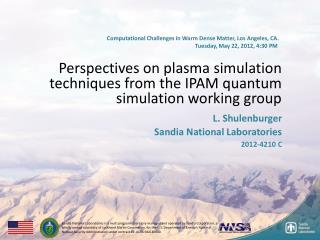 Perspectives on plasma simulation techniques from the IPAM quantum simulation working group