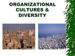 ORGANIZATIONAL CULTURES  DIVERSITY