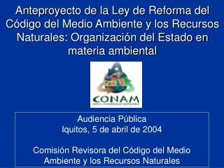 Audiencia P�blica Iquitos, 5 de abril de 2004
