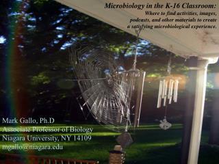 Mark Gallo, Ph.D Associate Professor of Biology Niagara University, NY 14109 mgallo@niagara